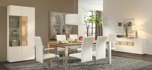 Modern Dining Room Sets to Give Trendy Look in Modern Home