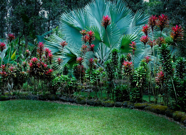 20 gardens tropical plants design ideas eva furniture for Tropical landscape