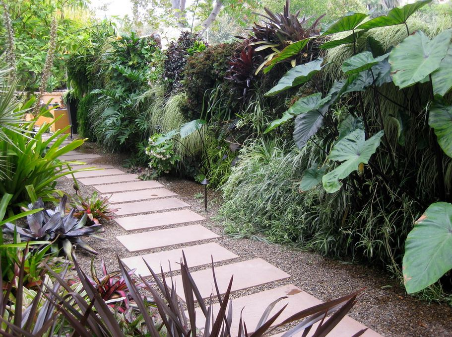 green-wall-in-a-side-yard