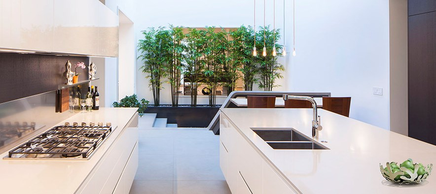 modern-kitchen-with-a-screen-of-plants